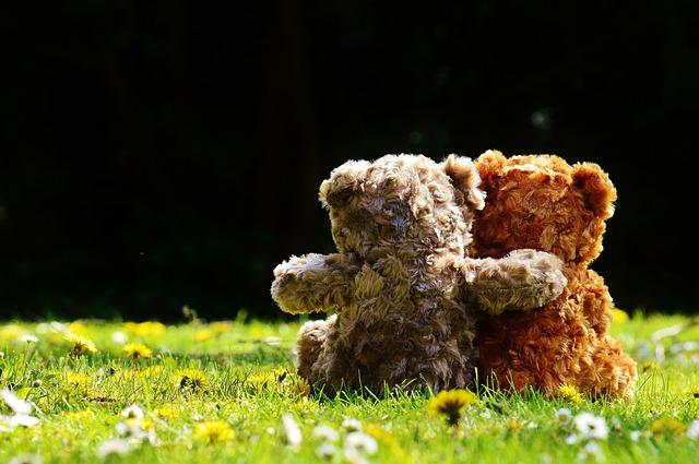 Teddy Mitgefühl Empathie Hilfe Mitleid